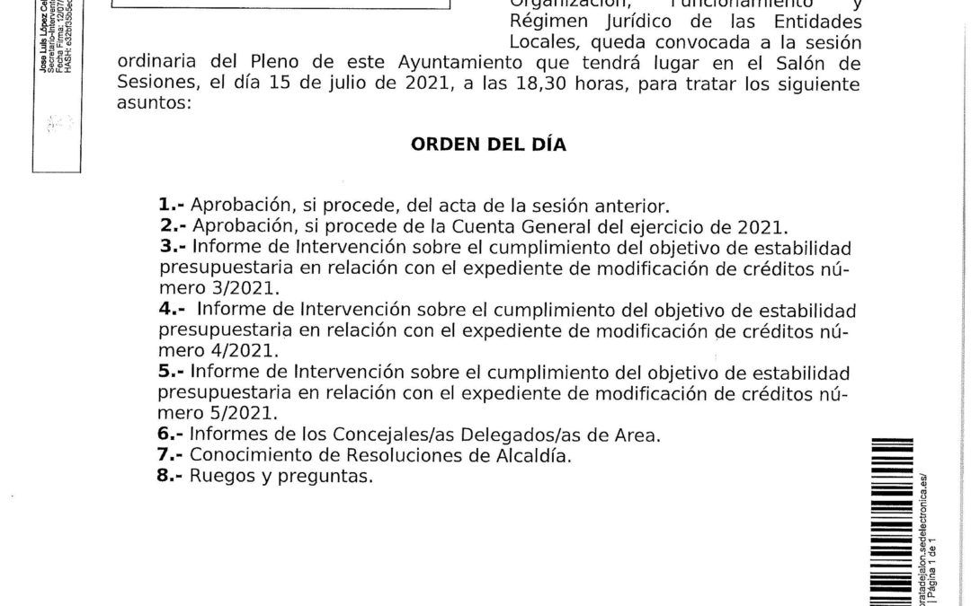 Convocatoria de sesión plenaria ordinaria para el día 15 de julio de 2021, a las 18,30 horas