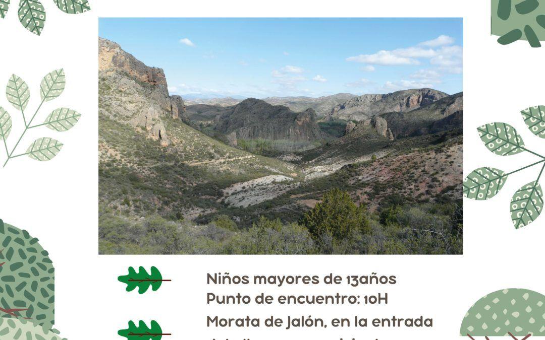 Ruta R8 del Jabacin, las Torcas y Meandro del Jalón